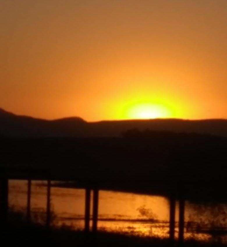 Click do Dia - Lindas fotos tiradas na Lagoa Rica, veja!